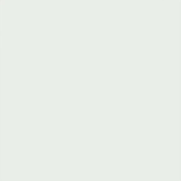 Lackiertes Glas - White Extrasoft 9110
